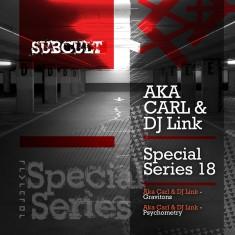 SUBCULTSSEP18 Aka Carl & DJ Link 800x